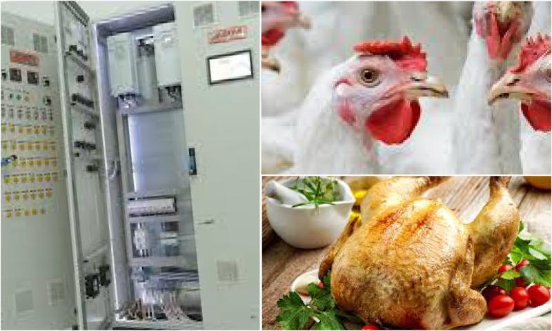Kanatlı Eti Üretiminde Kullanılan Makine Türleri