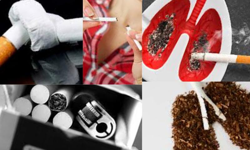Sigara ve Akciğer Kanseri Arasındaki İlişki